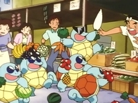 squirtle belushi of squirtle house