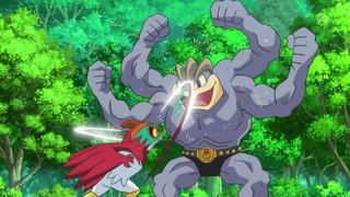 hawlucha vs machamp forest champion