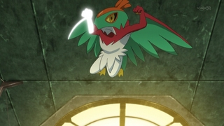 hawlucha flying press