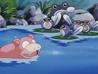 pokemon saison 1 episode 25 une rencontre mouvementée