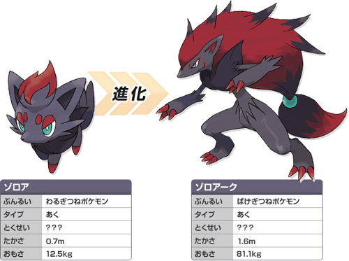 dragon type zorua and - photo #25
